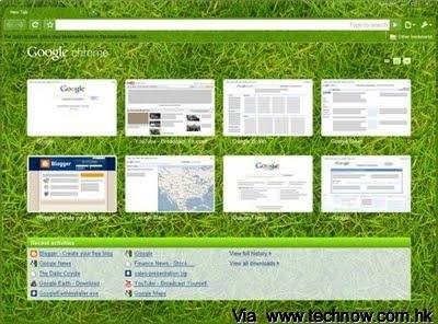 Grass-Beta--Recent-Activities